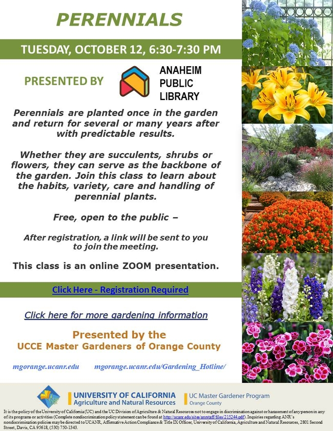 Have You Heard About Perennials?