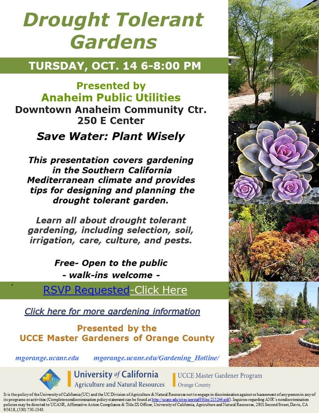 Join Us For Drought Tolerant Gardens