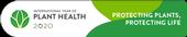 IYPH Web Button Horizontal 450x90px EN