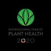 IYPH2020 Logo Vertical  EN
