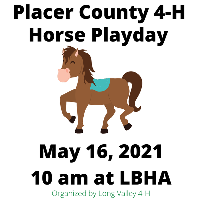 Placer County 4-H horse playday