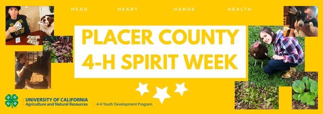 spiritweekblog