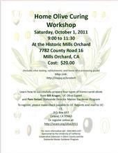 Olive Curing workshop 2011