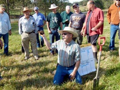 2018 irrigated pasture