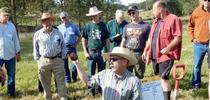 2018 irrigated pasture for Ranching in the Sierra Foothills Blog