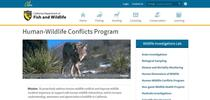 CDFW HW Conflicts webpage for Ranching in the Sierra Foothills Blog