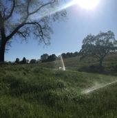 4-19-18 irrigation (2)