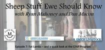 sheep stuff title for Ranching in the Sierra Foothills Blog