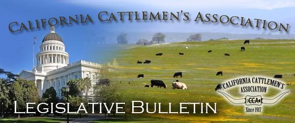 CCA Legis Bulletin