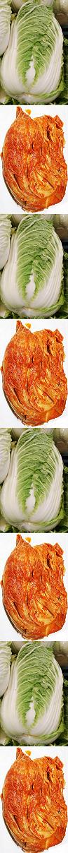 Kimchi Napa border