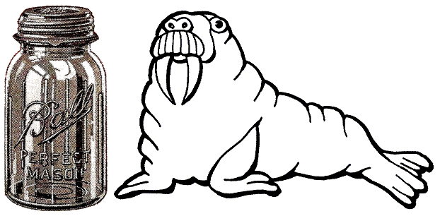 walrus canning
