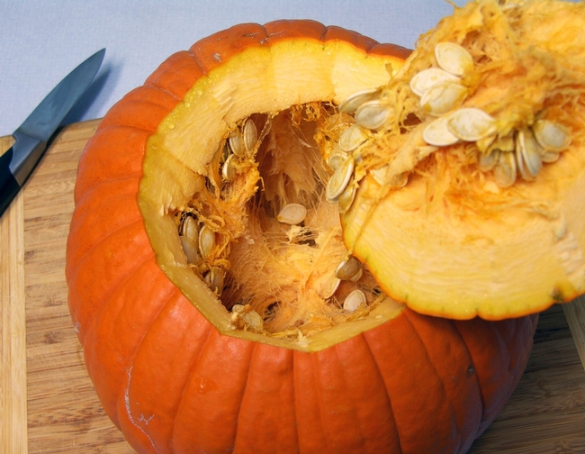 Photo of pumpkin cut, showing seeds inside by Master Gardener, Michele Martinez.