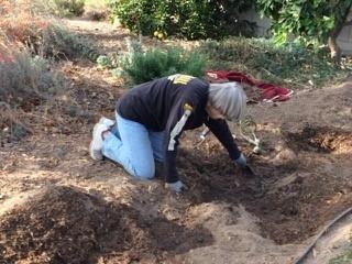 San Bernardino County Master Gardener Loleta Cruse in her drought tolerant garden