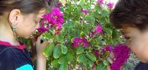 Maggies kids 5 for UCCE Master Gardeners of San Bernardino County Blog
