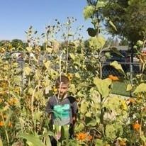 Desert Knolls Elementary School Garden