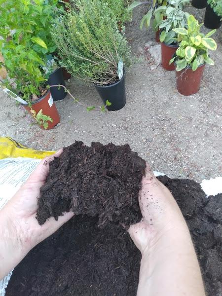 aug blog soil