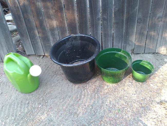 aug blog pots 3 sizes