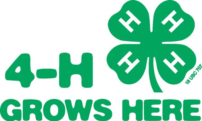 4H Grows Logo