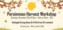 PersimmonHarvestWorkshop Twitter for News from UC ANR South Coast REC and Beyond Blog
