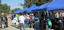 Expo 2016 for UC ANR South Coast REC Field Events, Workshops, and Extension Blog