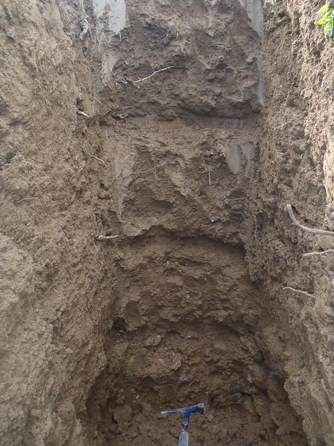 Soil Pit 1