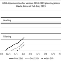 Figure 1: Growing degree accumulation (GDD: max = 86F; min = 45F) for various planting windows between this year's storms. These may vary slightly between areas like Dixon, Zamora, and Davis.
