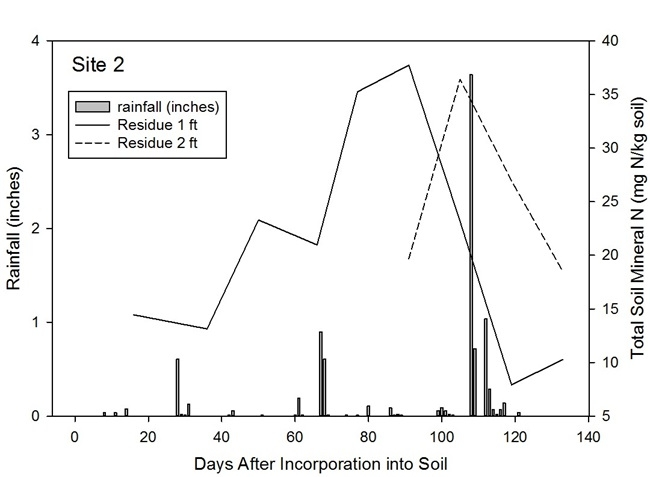 Figure 5. Response of levels of residual soil nitrate from broccoli residue to rainfall events