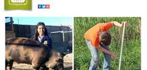 Grants Available for Organic FFA Projects Page 1 for San Bernardino 4-H Blog
