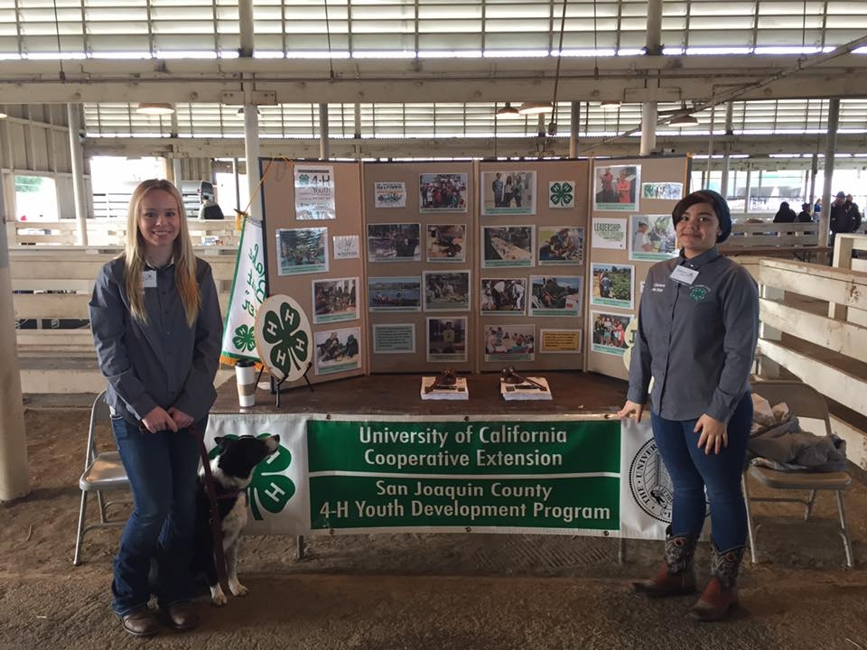 All Star Team Reaches Out To 3rd Graders At Agventure San Joaquin County 4 H Anr Blogs