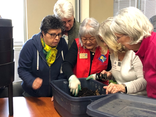 Learning about vermicomposting (composting using worms).