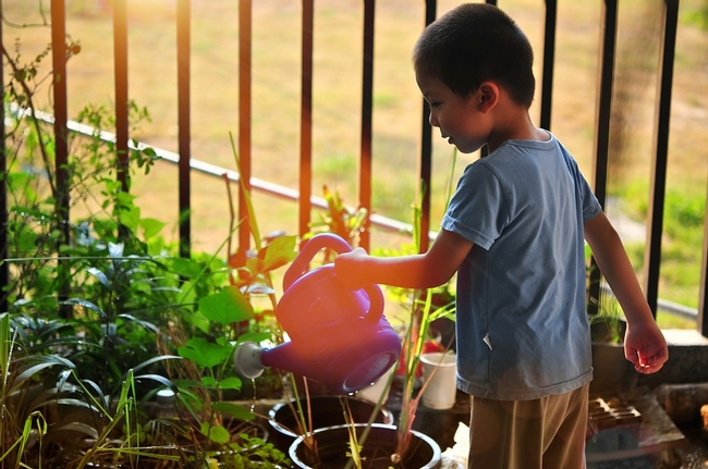 Little boy holding an orange watering can over some plants.