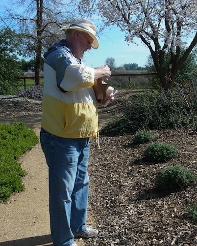 Robbin Thorp placing new straws into the bee nesting blocks.