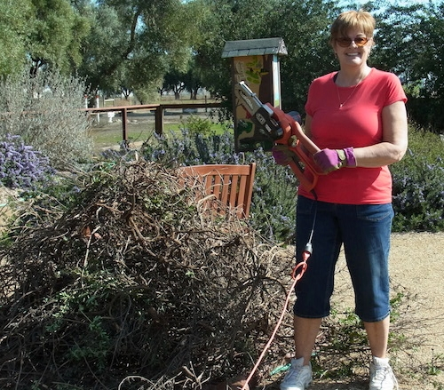 Janet Brown-Simmons next to dead plants she has just removed from the garden.