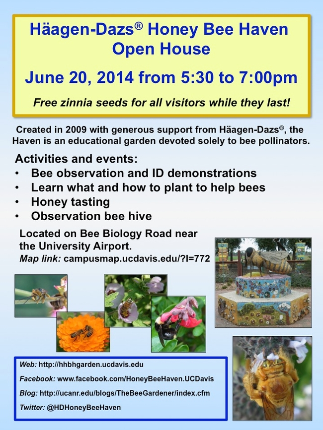 Pollinator week flyer
