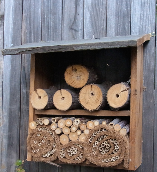 Fence-mounted bee hotel similar to what will be available for purchase at the open house.