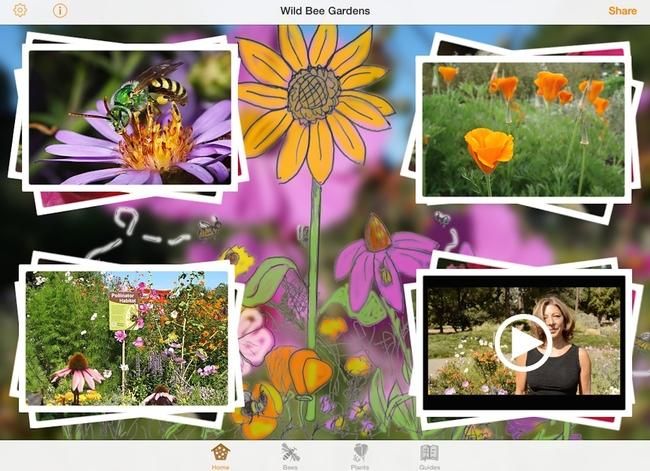 Wild Bee Gardens app