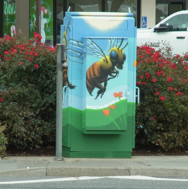 Painted utility box at a busy corner with bee and poppy flower