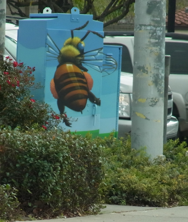 Another view of the utility box depicting the bee's heavy pollen load.