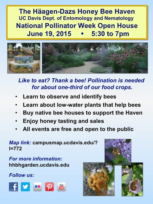 Flyer describing the National Pollinator Week open house at the Honey Bee Haven on June 19