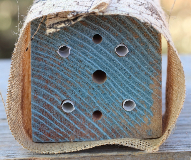 Example of a correctly-made solitary bee house