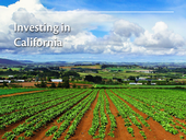 Investing in California title slide
