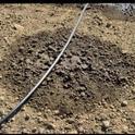 Scheduling Drip Irrigation