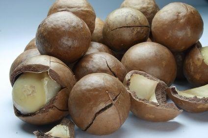 beaumont-macadamia