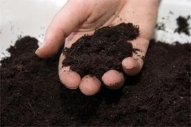 handful soil