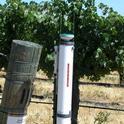 atmometer grapes