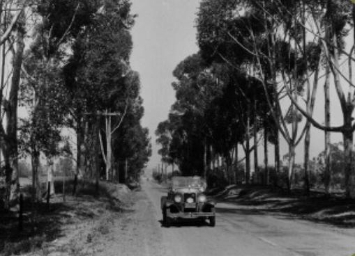 eucaplyptus drive 1930 Hogg, Auto Club C. CA