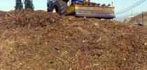 mulch for Topics in Subtropics Blog