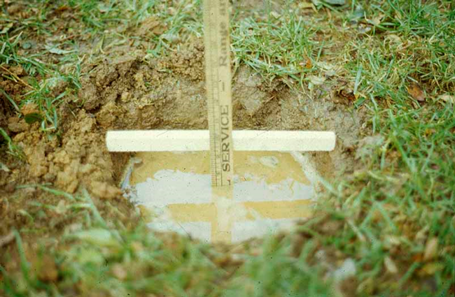 Conduct a drainage test