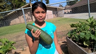 Guess the weight of this zucchini