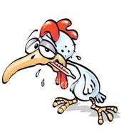 Chicken with flu